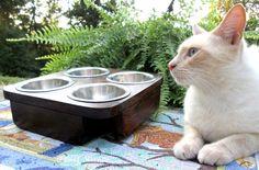 Cat Feeder - Cat - Feeder - Handmade Raised Pet Table 4 Bowls -  Dinner for 2 -  Hand made Raised Cat Feeder -  Cat Bowl Holder Feeding Dish...