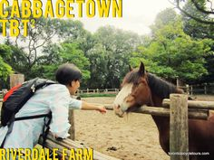 Happy #TBTsquared to a visit to Cabbagetown's Riverdale Farm Toronto on September 2, 2013. A little bit of farm life in the city.