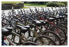 Bike rentals/easiest access to bike path
