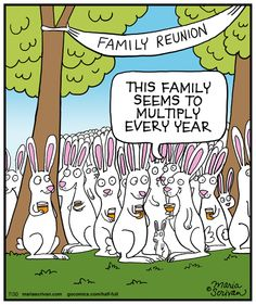 Today on Half Full - Comics by Maria Scrivan Spring Jokes, Chevy Jokes, Scooby Doo Images, Funny Toons, Animal Humour, Resurrection Day, Funny Quotes, Funny Memes, Funny Bunnies