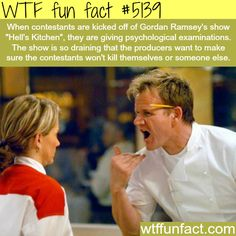 "Gordon Ramsey's show ""Hell's Kitchen"" - WTF fun facts 
