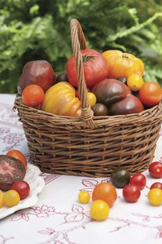Appetizer Recipes, Snack Recipes, Appetizers, Snacks, Victoria Magazine, Clean Plates, Heirloom Tomatoes, Tomato Salad, Light Recipes