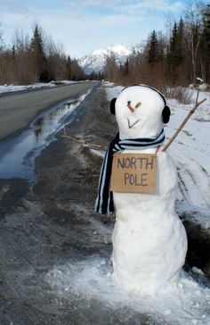 Snowman hitchin' to the North Pole...