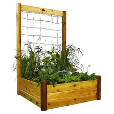 Garden Ideas Discover Gronomics 48 in. x 48 in. x 19 in. Raised Garden Bed with 48 in. W x 80 in. H Safe Finish Trellis Kit-RGBT TK - The Home Depot 48 in. x 48 in. x 19 in. Raised Garden Bed with 48 in. W x 80 in. H Safe Finish Trellis Kit Raised Garden Planters, Cedar Raised Garden Beds, Building A Raised Garden, Potager Garden, Garden Trellis, Raised Beds, Vegetable Planters, Raised Gardens, Cedar Planters