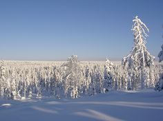 Winter in Korouoma, Finland Finland, Wilderness, Winter, Outdoor, Outdoors, Outdoor Games, The Great Outdoors, Winter Fits, Winter Fashion