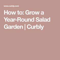 How to: Grow a Year-Round Salad Garden | Curbly