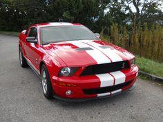 Shelby Cobra 500; 2007 Fun Fun Fun