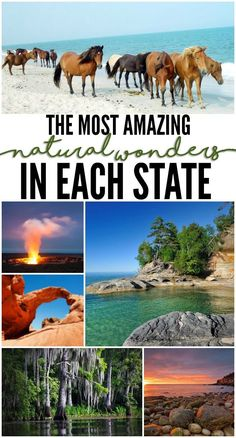 This gorgeous travel photography takes you on a tour of the most amazing natural wonders in each state - who knows, your next vacation could be a family getaway across the nation or a roadtrip to a beautiful location in your own backyard!: