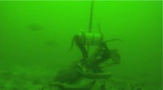 Thieving octopus displays remarkable skills on camera in South Africa. Watch octopus stealing a bait canister that had been secured to a chain in front of an underwater camera.   The octopus managed this incredible feat by untying three cable ties, while fighting off a pajama catshark.