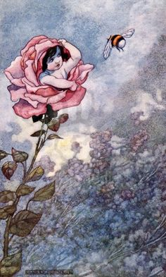 illustrations by Charles Robinson