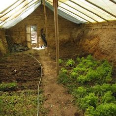 Underground greenhouse utilizes earths natural heat.