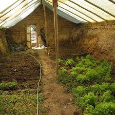 Underground greenhouse utilizes earths natural heat.