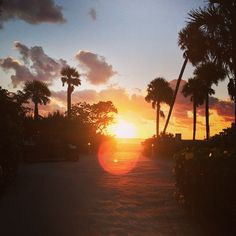 #PaolaPerego Paola Perego: #Miami #whotel #alba #cosilontanicosivicini #workinprogress #rai1 #altrastoriaaltreemozioni