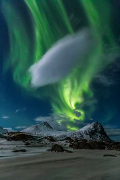 Aurora Borealis lights up the night sky over Myrland, Lofoten, Norway (by brigitte mohn)