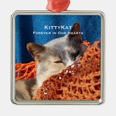 YOUR Cat or Dog PHOTO Personalized Premium Memory Metal Ornament - tap to personalize and get yours #MetalOrnament #pet #dog #or #cat #orange Memorial Ornaments, Christmas Themes, Christmas Stuff, Inexpensive Gift, Holiday Festival, Dog Photos, Dog Design, Dog Food Recipes, Pet Dogs