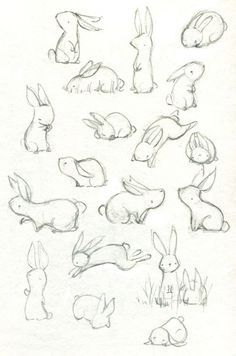 Sweet Bunny sketches