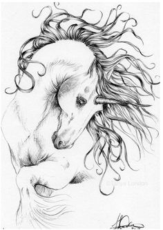 Windswept Unicorn Fantasy Equine Original Pen Sketch By Tanya London in Art, Direct from the Artist, Drawings | eBay