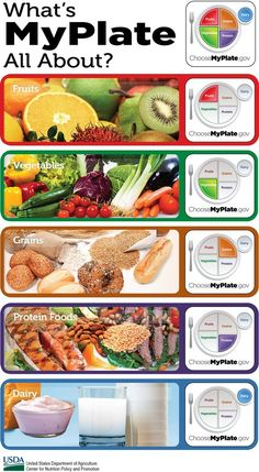 #MyPlate teaches the 5 food groups: #fruits, #vegetables, #grains, #protein, and #dairy.