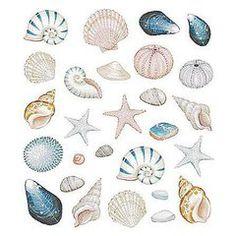 Motivos del mar para decorar lo que sea...