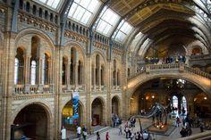 Natural History Museum   da jamesvip65