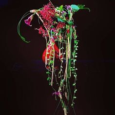 Gregor Lersch, Flower Designs, Neon Signs, Vase, Floral, Instagram, Leaves, Board, Flowers