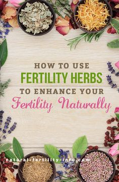 The purpose of this Fertility Herb Guide is to help you access information about the action of herbs that have been found supportive for reproductive health issues. #fertility #infertility #ttc #ttcsisters #fertilityherbs #naturalfertility #NaturalFertilityShop