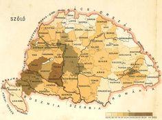 Szőlőterületek Magyarországon / Vineyards in Hungary A Pallas nagy lexikona, 1893-1897.