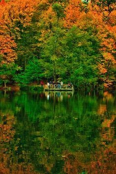 ✯ The Yedigoller (Seven Lakes) National Park, Bolu, Turkey