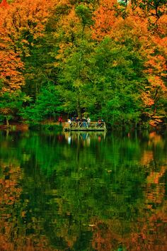 ✯ The Yedigoller (Seven Lakes) National Park, Bolu, Turkey