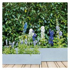 The lightweight and contemporary Pallas small long black metal planter provides the perfect backdrop for statement plants. Buy now at Habitat UK. Metal Planters, Large Planters, Garden Art, Garden Design, Garden Ideas, Growing Tulips, Vegetable Garden Tips, Galvanized Metal, Black Metal