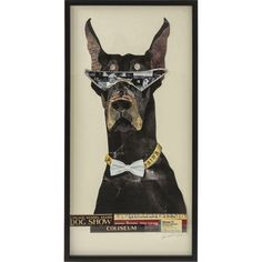 Empire Art Direct 'Doberman Pinscher' Dimensional Collage Wall Art - x - Multi Wall Collage, Frames On Wall, Framed Wall Art, In Ancient Times, Doberman Pinscher, Dog Show, Art Model, Doge, Baby Clothes Shops