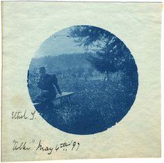 Vintage Cyanotype 1897. Aliki.