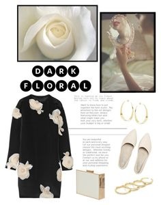 """#347"" by blacksky000 ❤ liked on Polyvore featuring Lanvin, Lana, Fallon and AX Paris"