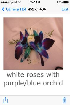 White roses with purple/blue orchids wrist corsage