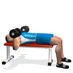 DUMBBELL BENCH PRESS INVOLVED MUSCLES DURING THE TRAINING CHEST Academia c0ff561422bd5