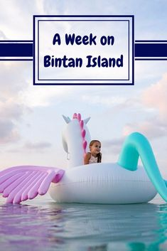 Bintan Island is the perfect holiday destination for families, with amazing kids clubs for the littles to meet new friends and be constantly entertained, as well as an amazing local culture with traditional temples not a short drive from the resort. Fiji Travel, Summer Travel, Travel With Kids, Asia Travel, Best Family Vacations, Family Destinations, Family Travel, Bintan Island, Meeting New Friends
