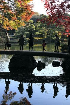 silhouettes | Rikugien Garden, Tokyo 六義園