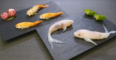 Sushi is delicious, and koi-fish are amazing, so why not join the two into an amazing and delicious combination? That's what JunsKitchen has achieved in their short video on how to make sushi that looks like real-life swimming koi fish.