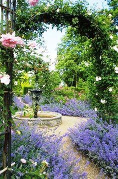 English Rose Garden.....