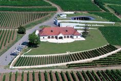 Patricius Borház madártávlatból Bird's-eye view of Patricius Wine House Wine House, Dry White Wine, Art And Technology, Birds Eye View, State Art, Wine Country, Exterior, Eyes, World