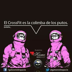 Crossfit Introvert Quotes, Little Bit, Images And Words, Humor Grafico, Space Cat, Happy Smile, Adult Humor, Wise Words, Joker