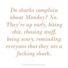 """Do sharks complain about Monday? No. They're up early, biting sh*t, chasing stuff, being scary, reminding everyone that they are a f*cking shark."" — Unknown"