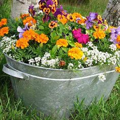 Before heading out to the local garden center for garden design ideas, look around your own home for new garden containers. Repurpose unique or common containers — bathtubs and toilet planters, for instance.