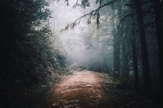 7 best luts looks images on pinterest film movie movie and movies by fitrstm gumiabroncs Images