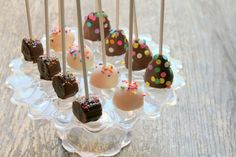 Chocolate dipped fruit pops!