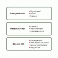 leadership role essay