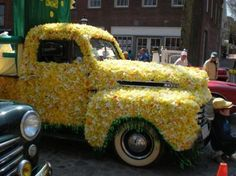 Daffodil Weekend Parade on Nantucket.  There is a Daffy Hat Contest, a Children's Parade featuring decorated bikes, strollers, wagons, and other self-propelled vehicles. The Pine Woods Morris Dancers often perform throughout the day at various locations.