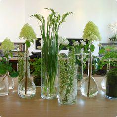 """Flower Laboratory"""