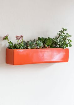 Grow with Your Instincts Wall Planter. Save room on your table or desk, without sacrificing a smidge of scenic greenery, by planting your fresh specimens in this wall planter! #multi #modcloth