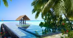 Reethi Rah Resort In Maldives Lap Pool With Garden